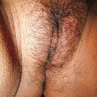 Hairy Indian Pussy Close-Up
