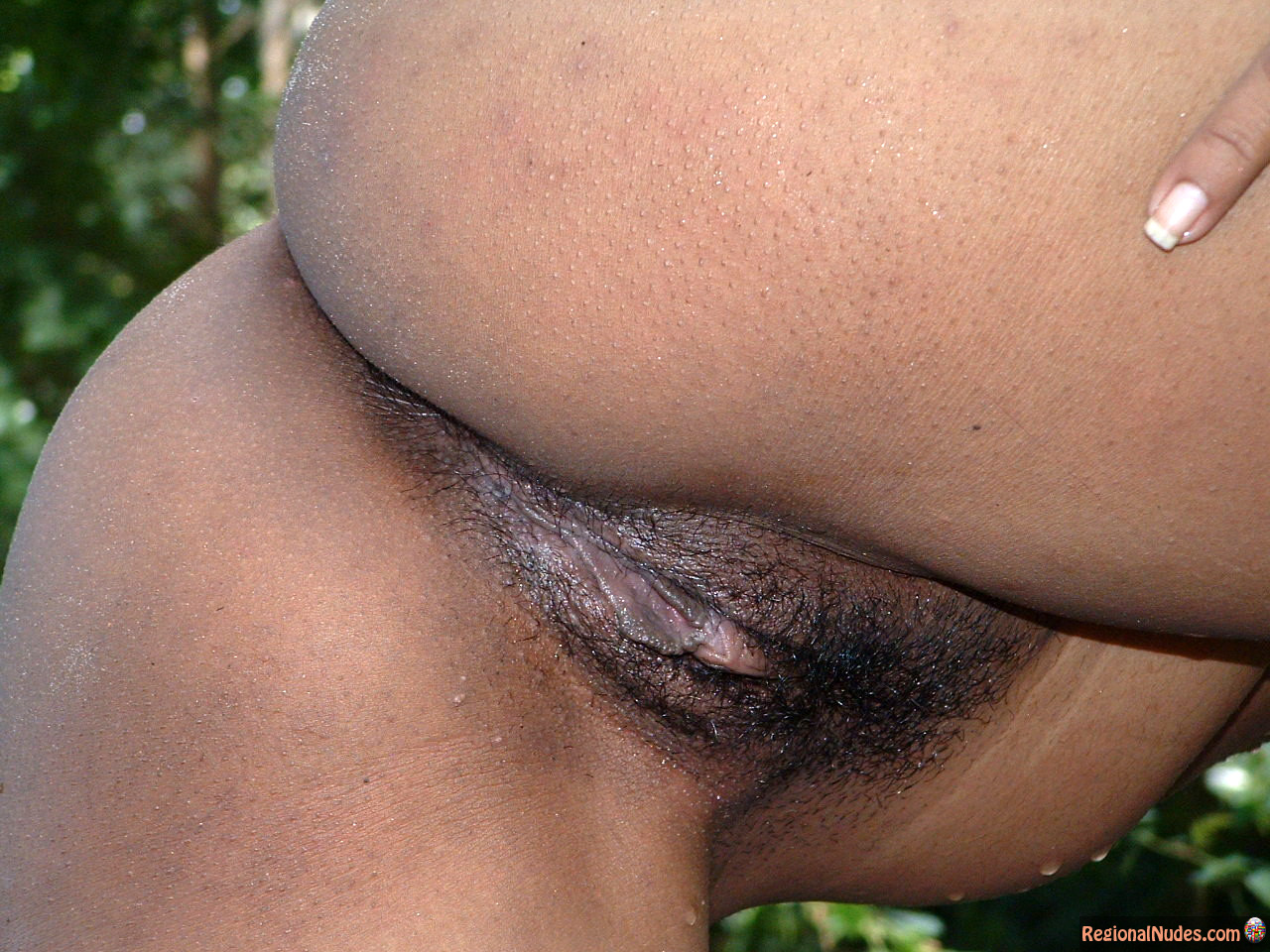 Beautiful Sri Lankan Ass Wet Hairy Vagina  Regional Nude -7613